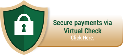 Secure Payments Via Virtual Check Button
